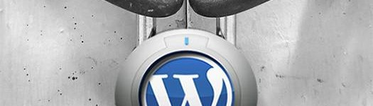 Permalink to WordPress Security